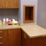 Our cat-friendly exam room...with cozy cubby!