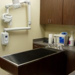 Wet table and digital x-ray used for dental cleanings